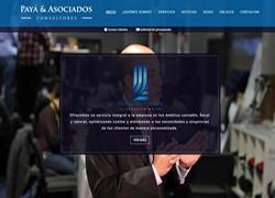 Payá & Asociados Consultores